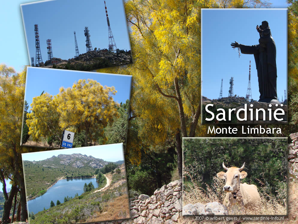 collage_sardinie_monte_limbara